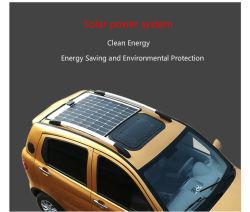 Diseño clásico, fácil de operar de la utilidad de la calle un coche eléctrico alimentado con energía solar