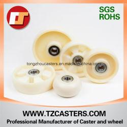 rotella di nylon industriale della macchina per colata continua di 200*50mm Mc senza nervature