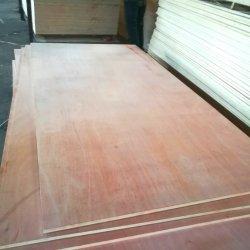 A primeira classe comercial folheado de madeira compensada pisos/Poplar/Birch Film enfrentados Madeira contraplacada