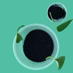 ماء - [سلوبل] كبريت أسود 100% [بر] لأنّ دنيم أسود