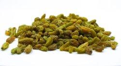 健康の乾燥されたブドウのフルーツの緑Rasins