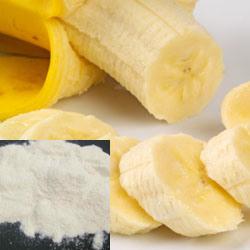 食餌療法の補足で使用される植物のエキスによって凍結乾燥させているバナナの粉