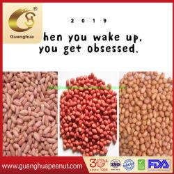 Kernels Amendoim saudáveis de matérias diferentes tipos