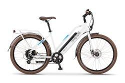 سيّدة [إبيك] [36ف] [350و] بالغ مدينة/طريق درّاجة كهربائيّة لأنّ عمليّة بيع