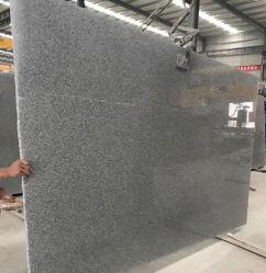 Китай серого гранита G603 гранитных плит для столешницами/