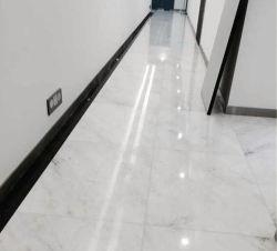 Novo Polidos Castro mármore branco em pavimentações/parede