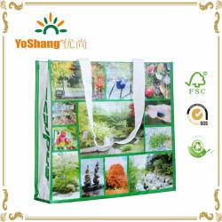 Sacco di acquisto laminato riutilizzabile decorativo non tessuto del regalo pp