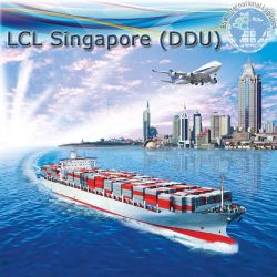 Puerta a puerta desde China a Singapur por mar LCL
