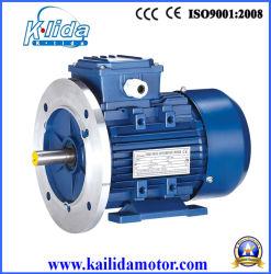 La serie Y3 de alto par motor de inducción trifásico