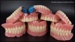 Laboratorio dental completo personalizado con la dentadura los dientes de acrílico acrílico con dentaduras económica