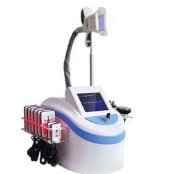 La cavitation RF Laser populaires Cryo amincissant la beauté de l'équipement vide