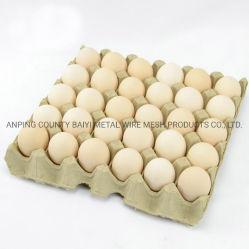 Наращиваемые коммутаторы яйцо мякоти бумаги лоток производственной линии в Индии