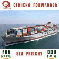 Mar Ocean Freight Forwarding personalizada Forty-Foot empresa consignataria de 40 contenedores de 20 ft.