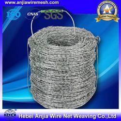 Galvanisé rasoir en acier inoxydable pour la protection de maille de fil barbelé