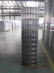 HDG / enduit de PVC Clôture de l'utilitaire soudé