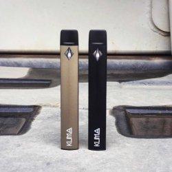 Petit Nice design Kuma Cigarette électronique