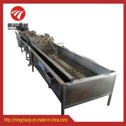 De industriële Wasmachine van het Fruit en van het Roestvrij staal van Groenten met Luchtbellen