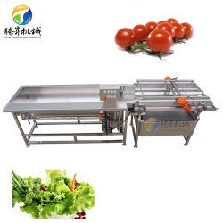 Промышленных овощей листьев шайбу мойка для нарезки обезвоживания обработки строковых стиральной машины (TS-X680)