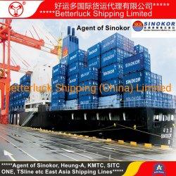 Контейнерных перевозок из Китая Шэньчжэне в Корее Sinokor Pyongtaek Agent низкий расходы на перевозку