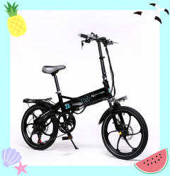 20pouce populaires européens à vitesse variable de pliage intégré avec roue de Vélo Electrique vélo électrique