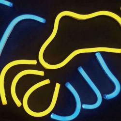 Indicatore luminoso chiaro flessibile della pubblicità dell'indicatore luminoso di striscia dell'indicatore luminoso LED della corda del gel di silice 12V 24V 6*12mm