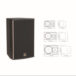 QSN 500W 전문가용 고성능 DJ 스피커(XT15)