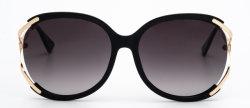 [هيغقوليتي] منتوج صناعة يجعل بيع بالجملة أمر إطار نظّارات شمس