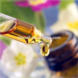 Pure et naturelle de l'huile d'aiguilles de pin