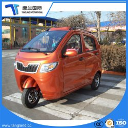 Mini Three-Wheeler Voiture électrique pour la famille/loisirs/tourisme