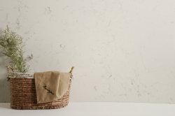 China van uitstekende kwaliteit bouwde het Kunstmatige Kwarts van de Keuken