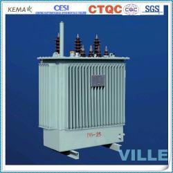 250kVA 6KV/10kv de Petroquímica Transformador de potencia de distribución de energía del sector metalúrgico transformador especial transformadores de aceite Industrial