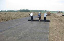 UniAxial Geogrid PP لبناء طريق عالي أو سكة حديد