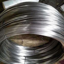 La pantalla de bajo precio de alambre de acero de malla de alambre de acero para paraguas