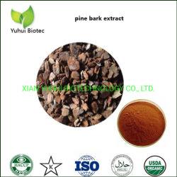 Extracto de corteza de pino puro 95% de polvo de proantocianidinas