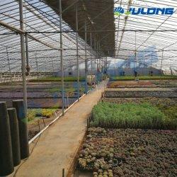 Un buen rendimiento pequeño solo de plástico para invernaderos Folm Span Flores verduras tomate con el sistema de refrigeración/Sistema de ventilación