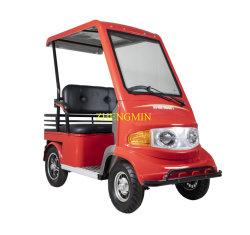 Новые поступления четыре Уилер отдых электрический мобильности автомобиля 60V800W с маркировкой CE и крыши