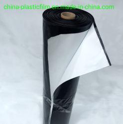 Kundenspezifischer LDPE-Qualitätsschwarzweiss-Film-Plastikgewächshaus-Deckel-Plastikpanda-Film