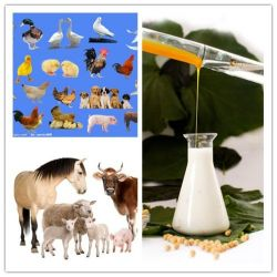 Water Soluble Soya Lecithin Liquid for Poultry Feed Grade