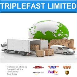 Express TNT логистических услуг авиаперевозки доставка грузов