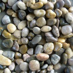Mélange de couleur de pierre de galets de rivière naturel poli