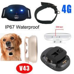 4G IP67 نظام تحديد المواقع العالمي (GPS) مقاوم للمياه جهاز تتبع الحيوانات الأليفة LTE جهاز تتبع الحيوانات الأليفة GPS مع الجدار الجغرافي ومنبه الطاقة المنخفضة V43