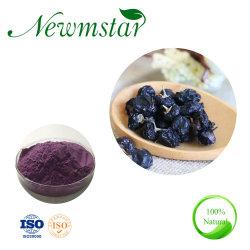 Forte Anthocyanidin antioxidante preto orgânico Extrato Goji Wolfberry Preto extraia