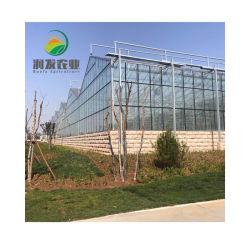 Венло стекла крыши охватывает выбросы парниковых газов для продажи