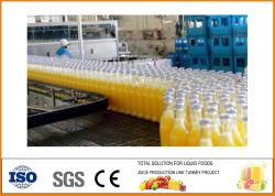 De commerciële Verse Trekker die van Juicer van het Fruit van de Trekker van het Sap van de Installatie van de Productie van het Groentesap van de Machine van de Trekker Juicer van het Vruchtesap Oranje HandMachine maakt