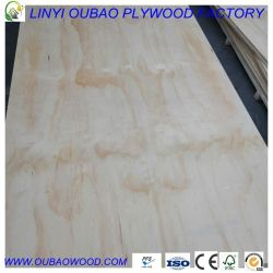 compensato del pino di 1220X2440mmx15mm CDX Cile per costruzione e tetto