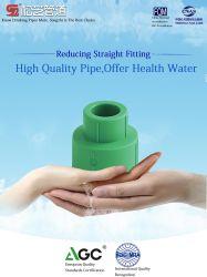 Wasser-Großhandelsrohr der Fabrik-kundenspezifisches niedriger Preis-hitzebeständiges Plastikrohrfitting-PPR