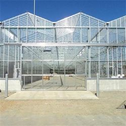 El vidrio Multi Span PC apagón película de policarbonato plástico de la hoja de planta de aluminio de la agricultura El cultivo hidropónico de efecto invernadero comercial