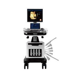 Biobase 노트북 초음파 실시간 4D 컬러 도플러 컬러 도플러