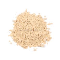 Pó de cogumelo Agaricus bisporus Champignon Tempero Cogumelo