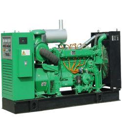 مولد الطاقة الكهربائية من طراز CHP Cالكتلة الحيوية بقدرة 2 ميجاوات بقدرة 2 وات